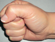 Functionele anatomie van de hand en pols