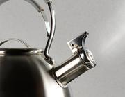 Tinnitus, een stoorzender voor functioneren